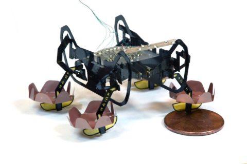 Next-generation robotic cockroach can explore under water environments