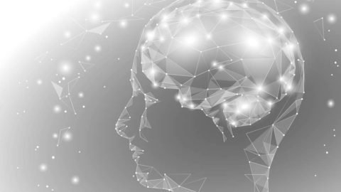 Science fiction enthusiasts have a positive attitude to the digitising of the brain