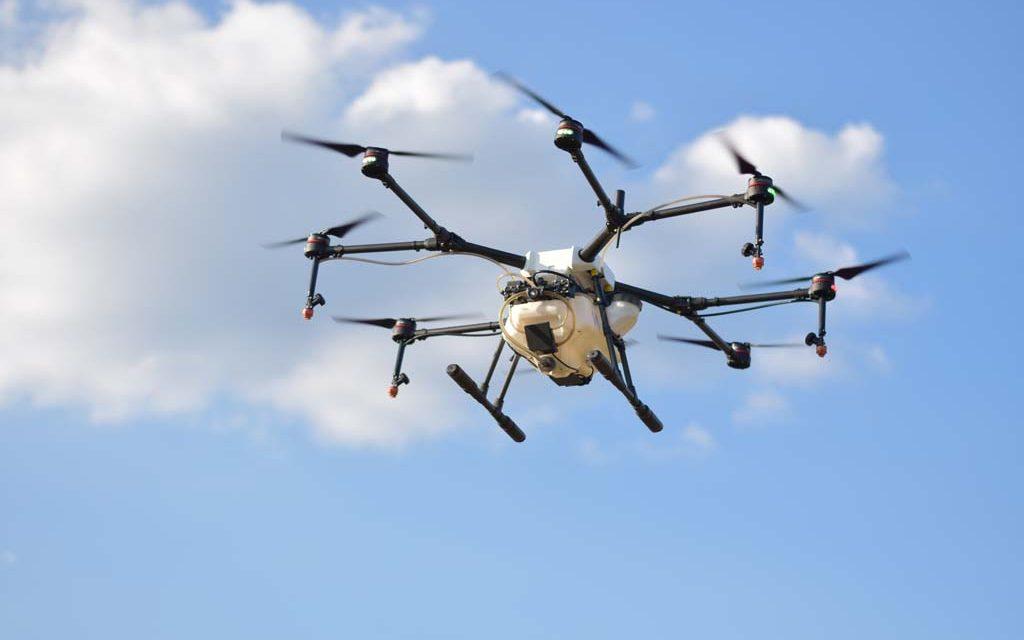 Robotic Herding of a Flock of Birds Using Drones