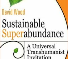 Sustainable Superabundance, A Universal Transhumanist Invitation by David Wood & Delta Wisdom (Book Review)